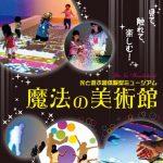 【イベント終了】光のワンダーランドが広島にやってきた☆ふくやま美術館「魔法の美術館」