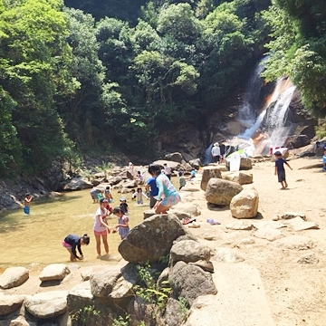 広島子育てママ必見!廿日市市「妹背の滝」は小さい子も安心して遊べる涼感スポット