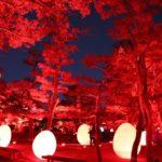 【イベント終了】「チームラボ 広島城 光の祭」で子どもといっしょに不思議な街アートを体験しよう♪