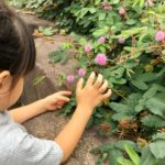 広島市植物公園へ行ってみよう!親子でお出かけしたくなる魅力をご紹介♡
