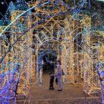 広島のイルミネーションスポット9選!2019年の情報をご紹介♡