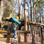 広島の公園やキャンプ場にあるアスレチックスポットで自然を満喫! おすすめ7選