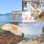 今実施中の広島の キャンペーンや企画まとめ! 大好きな広島を元気にしよう♪