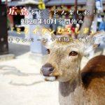 「ミタイケンひろしま」って知ってる?広島の魅力を改めて再確認!