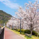 広島ママ憧れの街、春日野。取材したら本当に住みたくなっちゃいました!