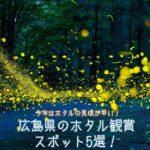 広島県のホタル観賞スポット5選!見ごろの時期や見える条件は?