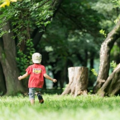 広島市植物公園ってどんなところ?四季を子供と楽しもう♪