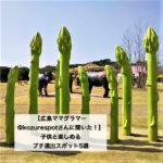 【広島ママグラマー@kozurespotさんに聞いた!】子供と楽しめるプチ遠出スポット5選