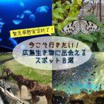 緊急事態宣言終了!今こそ行きたい、広島で生き物に出会えるスポット8選