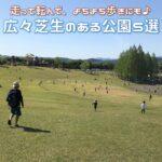 よちよち歩きの子供にぴったり!広々芝生のある公園5選