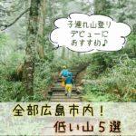 広島市内の「低い山」5選!子連れでの登山におすすめ