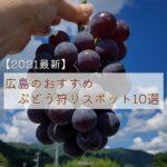 ぶどう狩りに!広島のおすすめ果物狩りスポット10選【2021最新】